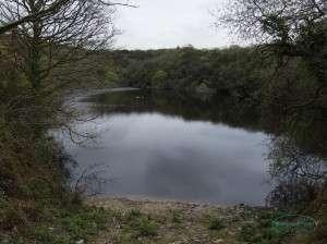 Quarry_site_17-04-2014_02
