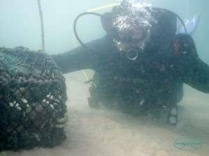 crabpot_diving