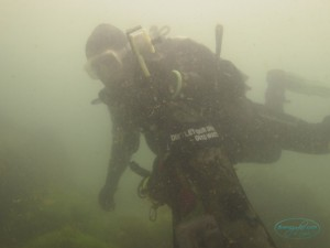 dive_against_debris_tc_rob